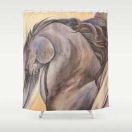 Raven Pegasus Shower Curtain