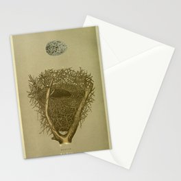 Magpie Nest Stationery Cards
