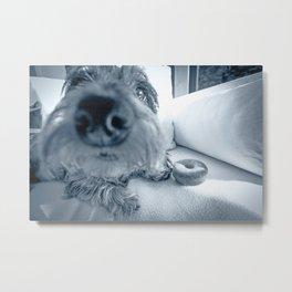 DACKEL DOG #31 Metal Print