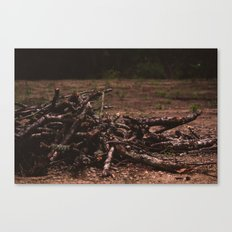 wooden soul Canvas Print
