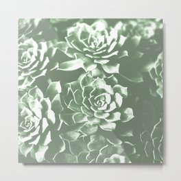 Modern sucullent green cactus floral pattern Metal Print