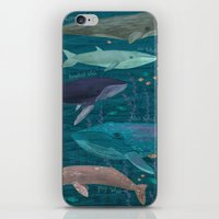 whales iPhone & iPod Skins featuring Whales by Stephanie Fizer Coleman