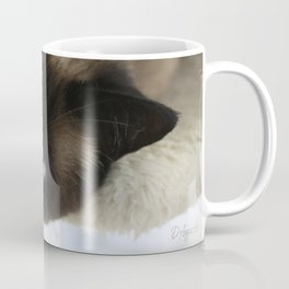 Siamese Soulful Expression Coffee Mug