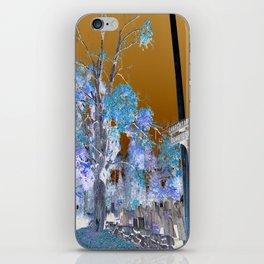 Churchyard  iPhone Skin