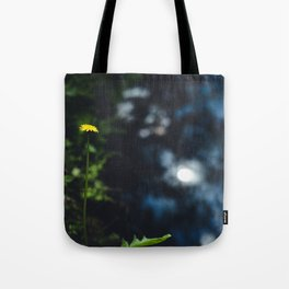 Reflection in the river Tote Bag