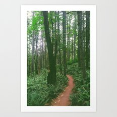a Trail Art Print