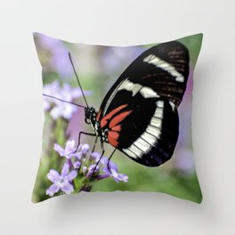 Butterfly Photograph Throw Pillow