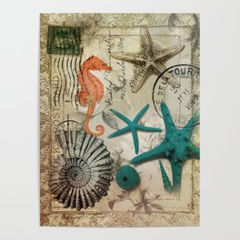 french botanical art seahorse teal green starfish Poster