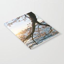 Sun Over the Horizon Notebook
