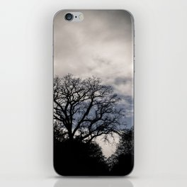 Breaking Through the Storm iPhone Skin