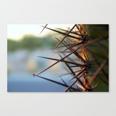 The Thorns In Life Canvas Print