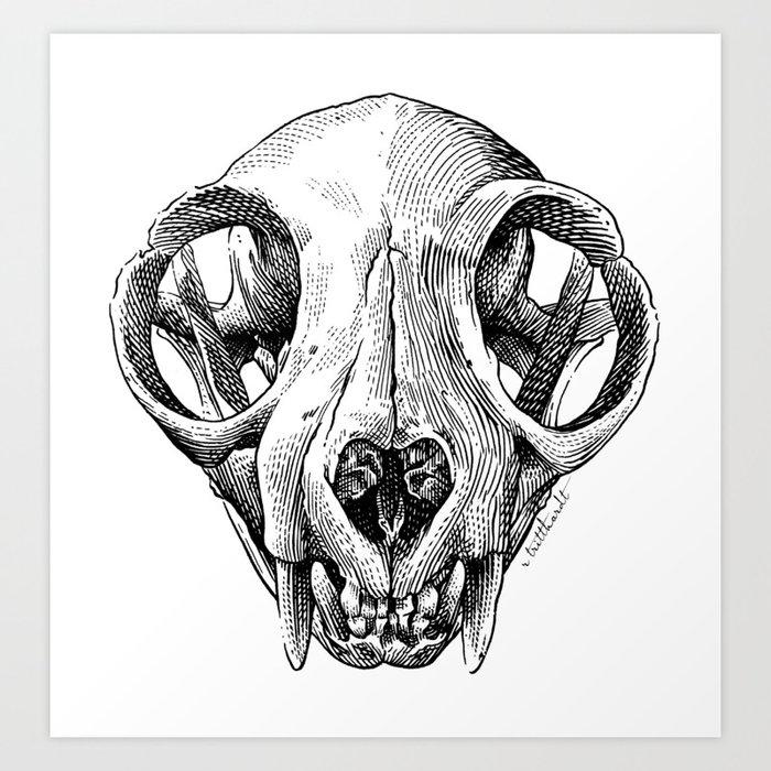Cat Skull illustration Art Print