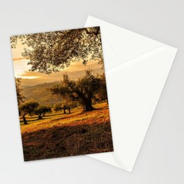 Olive Groves Along the Mountainside Stationery Cards