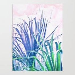 Pastel Palms Poster