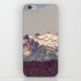 Vintage Cascades iPhone Skin