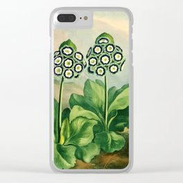 Auriculas : Temple of Flora Clear iPhone Case