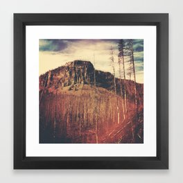 Burnt Forest III Framed Art Print