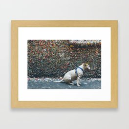 Bubble Gum Dog Framed Art Print