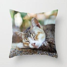 Peace Sleep Throw Pillow