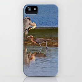 Strolling in Ding iPhone Case