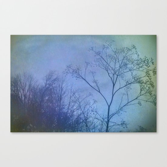 The Quiet of Winter Canvas Print