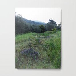 Hills of Morning Metal Print