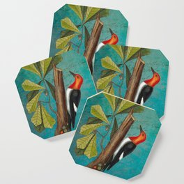 Red Headed Woodpecker with Oak, Natural History and Botanical collage Coaster