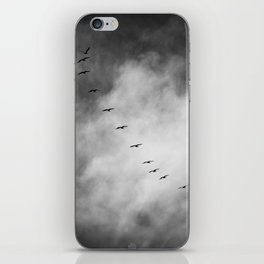 SEARCHING FOR BLUE SKY iPhone Skin