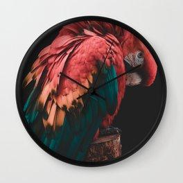 Parrot - Bashful Beauty Wall Clock