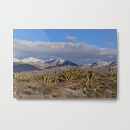 Winter in the Desert Metal Print