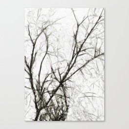 Pale Presence of Trees in Winter Canvas Print