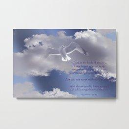 Seagull with Matthew 6:26-26 Verses Metal Print