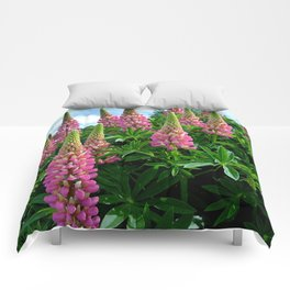 Rose Lupins in the Garden Comforters