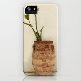 Bird of Paradise Plant iPhone Case