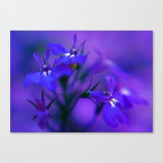 Blue & Purple Flowers Canvas Print