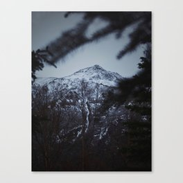 Eagle River Trail Canvas Print