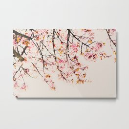 Pink Spring Blooms Nature Print Metal Print