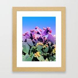 Sweet Rainbow Tropical Cactus #tropicalart #decor Framed Art Print