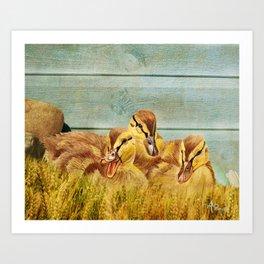 Wild Ducklings Art Print