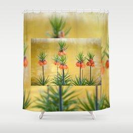Orange lily flowers Fritillaria imperialis Shower Curtain