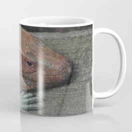 Northern Caiman Lizard Coffee Mug