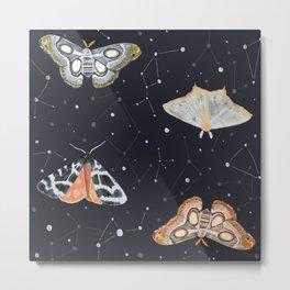 Midnight Moths Metal Print