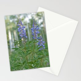 Silvery Lupine Flowers Stationery Cards