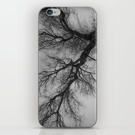 Lungs of the Earth | Nature Photography | Weeping Willow | Black and White | black-and-white | bw iPhone Skin
