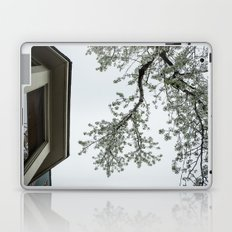 spring bloom reflected in loft window Laptop & iPad Skin