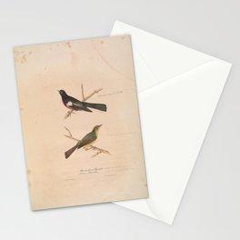 JP Giroud - North American birds (1841) -  White Shouldered Flycatcher &  Brazier's Flycatcher Stationery Cards