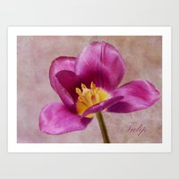 tulip Art Prints featuring Tulip by Fine Art by Rina