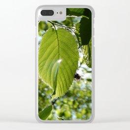 Sunlight Canopy II Clear iPhone Case