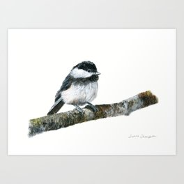 Black-capped Chickadee by Teresa Thompson Art Print