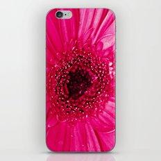 Hot Pink iPhone & iPod Skin